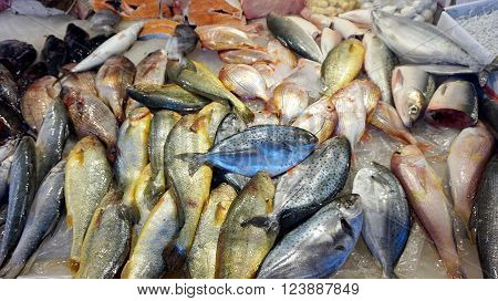 colorful fresh fish in local asian market