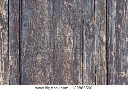 Old Wood. Background, Wooden Brown Texture For Designer