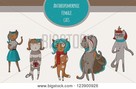 Set of beautiful cat female characters hand-drawn fun kind and cheerful. Vector illustration with isolated on white anthropomorphous animals suitable for mascot using or other design.