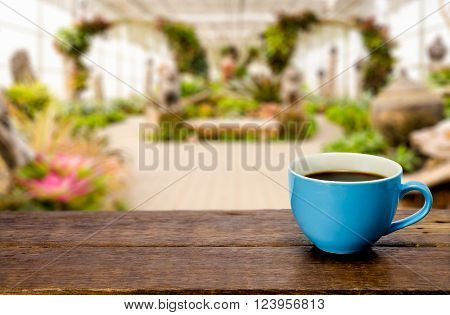 Cup of coffee  on a old wooden table in greenhouse garden.close up