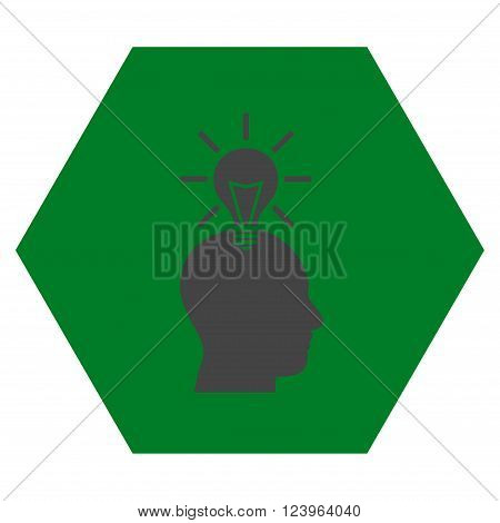 Genius Bulb vector icon symbol. Image style is bicolor flat genius bulb icon symbol drawn on a hexagon with green and gray colors.