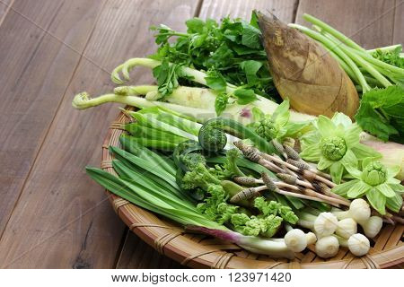 sansai, japanese edible wild plants vegetables