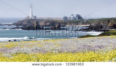Pigeon Point Lighthouse with Spring wildflowers. Pescadero, San Mateo County, California, USA.