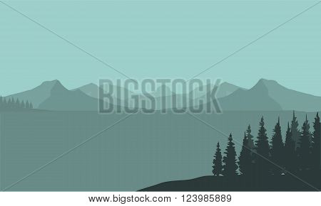 Silhouette of mountain and spruce in sea