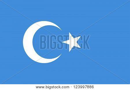 East Turkestan Flag.