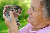 Senior woman holding little kitten - outdoor poster
