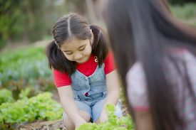 Happy Asian sister gardening together in the farm