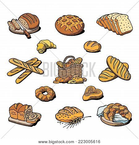 Bakery and bread vector baking breadstuff meal loaf or baguette baked by baker in bakehouse set illustration isolated on white background.