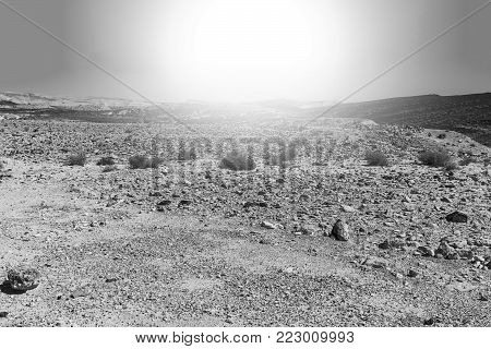 Rocky hills of the Negev Desert in Israel at sunrise. Breathtaking landscape of the desert rock formations in the Southern Israel Desert. Black and white picture