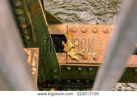 A fall autumn leaf on a corroded support extended over water