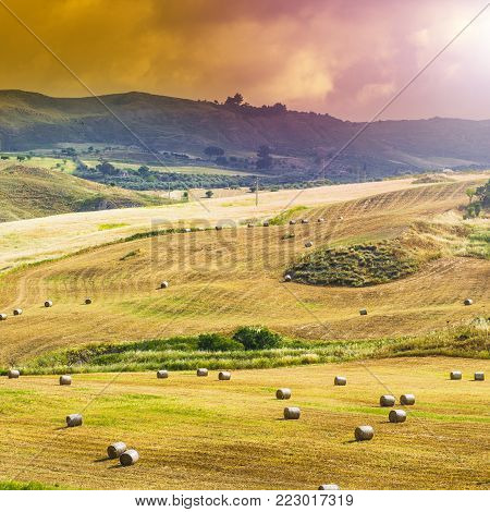 Wheat fields on the background of Sicilian hills at sunrise. Landscape with straw bales after harvest in Sicily.