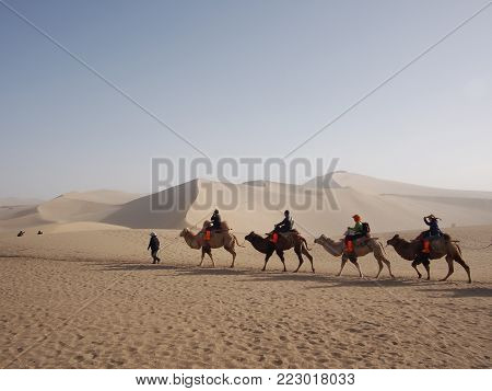 Riding A Camel In A Part Of Silk Road In Dunhuang Desert. Travel In Dunhuang, Gansu, China. In 2013,