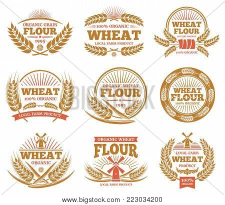 Wheat grain product and bread vector labels. Nature wheat ears badges. Agriculture sticker and label, wheat and organic flour illustration