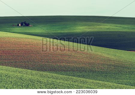 Rural landscape with green field, blue sky and wooden hunting shack , South Moravia, Czech Republic