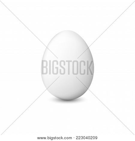 White chicken egg. Realistic vector illustration isolated on a white background.