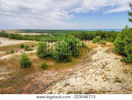 Sand dunes of the russian part Curonian Spit. Kaliningrad region, Russia
