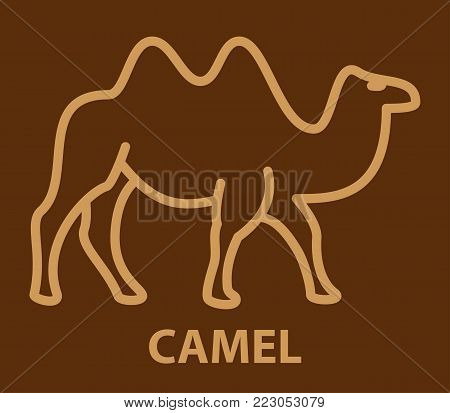 Camel icon in linear style. Two humpback camel logo template. Vector illustration.