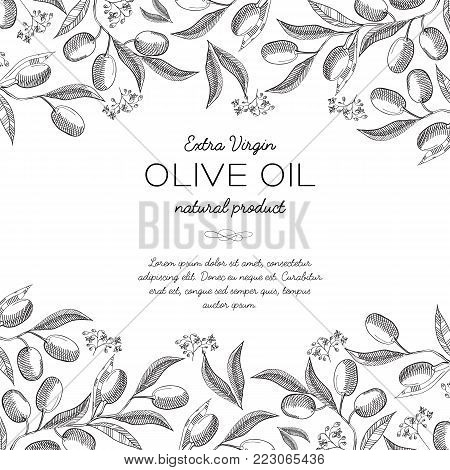 Upper and under horizontal elegant ornament engraving olive bunches border and beautiful berries hand drawn sketch vector illustration