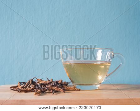 Select focus of mushroom cordyceps (CHONG CAO) this a herbs. With a glass of water, add water from the Ophiocordyceps sinensis extract. Medicinal properties in the treatment of diseases. poster