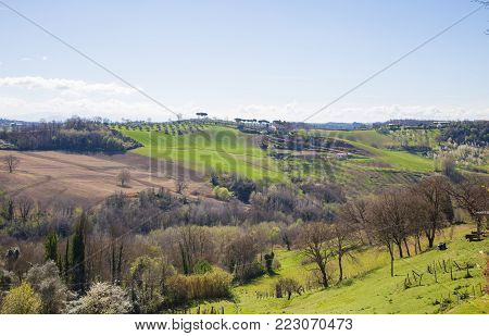 The hills of Sabina, in the province of Rieti, with partly cultivated fields and partly olive groves.