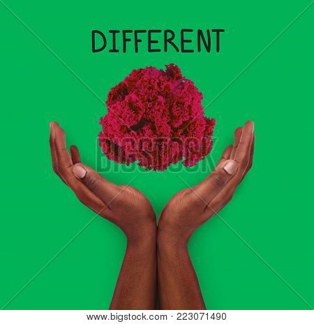 Conceptual lifestyle background. African-american male hands against backdrop with red colored kale leaves and different inscription. Dare to be different and individuality motivation poster