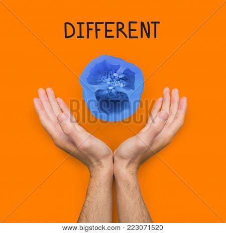 Conceptual lifestyle background. Male hands against backdrop with blue colored pepper half and different inscription. Dare to be different and individuality motivation poster