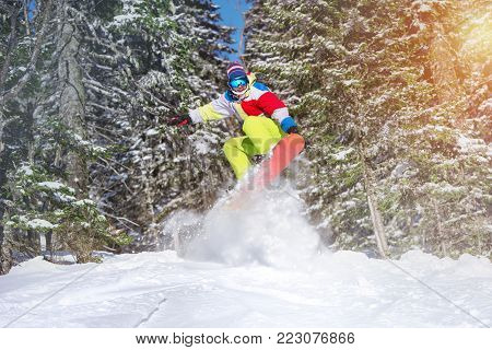 Happy snowboarder jumps offpiste against frozen forest. Backcountry skiing