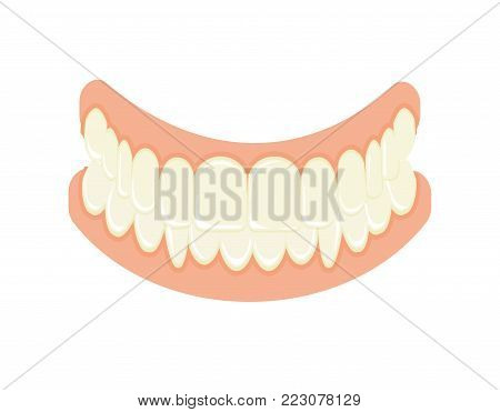Set of false teeth. Implanted jaw. Vector