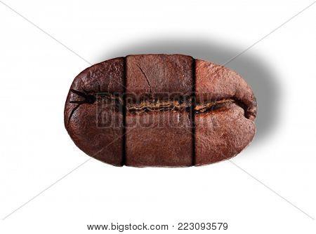 Three roast profiles of single coffee bean studio isolated on white background