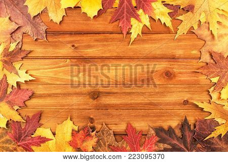 Autumn maple leaves over wooden background. Top view.