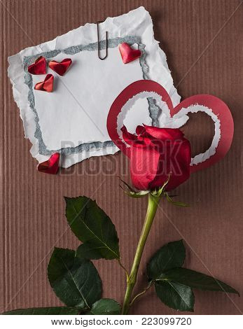 retro paper scraps with red rose on cardboard