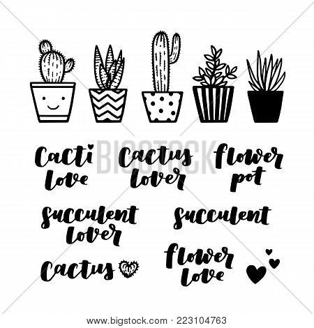 Set of hand drawn cactuses in flower pots and phrases. Succulent lover vector illustration on white isolated background.
