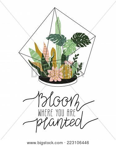 Hand drawn  contained tropical house plants. Scandinavian style illustration, home decor. Vector print design with terrarium and lettering - 'bloom where you are planted'.