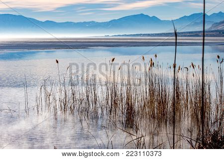 Beautiful and unusual landscape of swamp grass on the water edge with fog and mist over the lake and mountains in the background reflecting on the water.