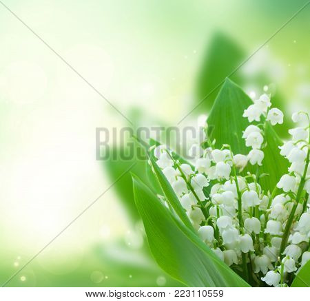 lilly of the valley fresh flowers close up on green bokeh background with copy space