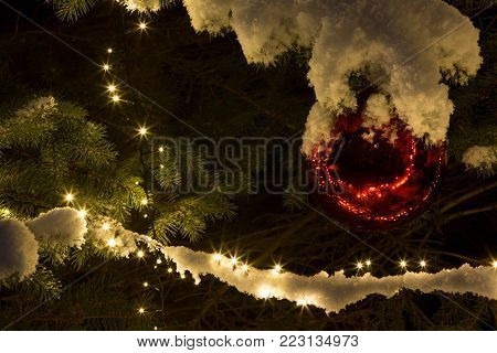 Snow covered  pine tree with red glass ball ornament and lighting