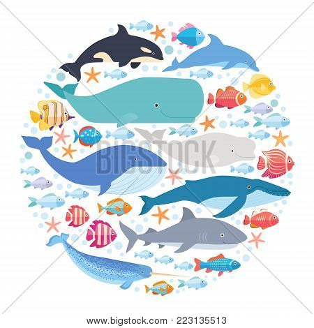 Marine mammals and fishes set in circle. Narwhal, blue whale, dolphin, beluga whale, humpback whale, and sperm whale vector on white isolated