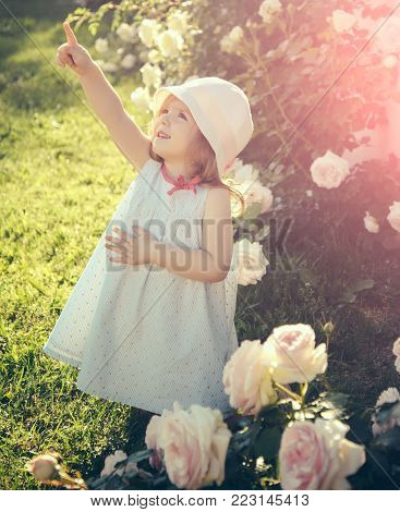 Child Standing At Blossoming Rose Flowers On Green Grass