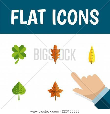 Icon flat leaf set of leaf, foliage, frond and other vector objects. Also includes leaf, foliage, aspen elements.