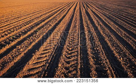 Rows of soil before planting.Furrows row pattern in a plowed field prepared for planting crops in spring.