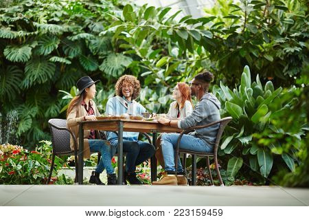Joyful companions having chat by served table during breakfast in orangery