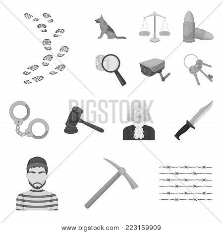 Prison and the criminal monochrome icons in set collection for design.Prison and Attributes vector symbol stock illustration.