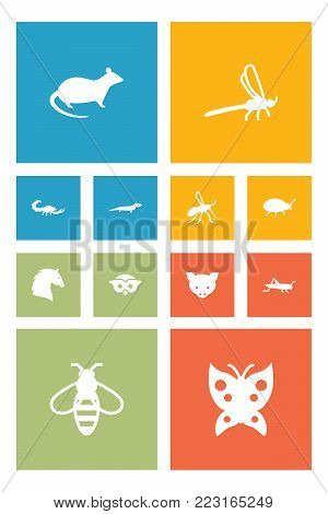 Set of 12 zoology icons set. Collection of dragonfly, grasshopper, rat and other elements.