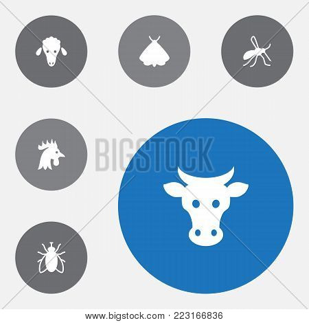 Set of 6 zoo icons set. Collection of cow, cock, sheep and other elements.