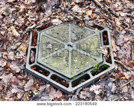 Manhole drain cover in woodland leaf undergrowth