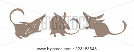Bandicoot, australian animal. Bilby vector. Isolated silhouette set for logo or mascot.