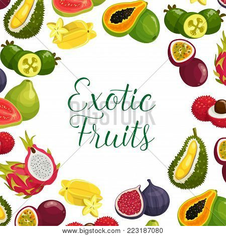 Exotic fruits poster of papaya, durian or mango and feijoa, fresh tropical orange pomelo, mangosteen or rambutan and mango, dragon fruit pithaya, maracuya passion fruit or figs and guava for shop