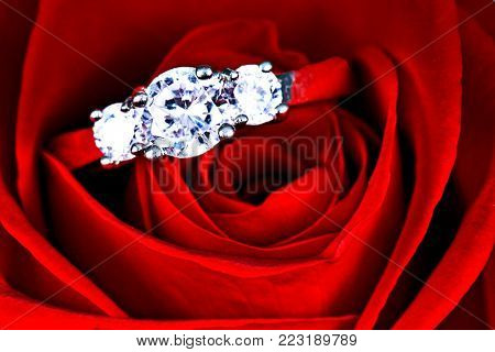 Wedding Ring in Rose, Valentine's Day