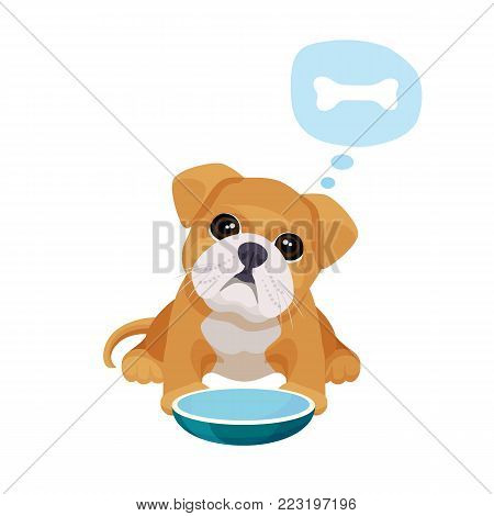 Little puppy with big eyes sits near empty bowl and thinks about bone. Adorable boxer baby isolated cartoon flat vector illustration on white background.