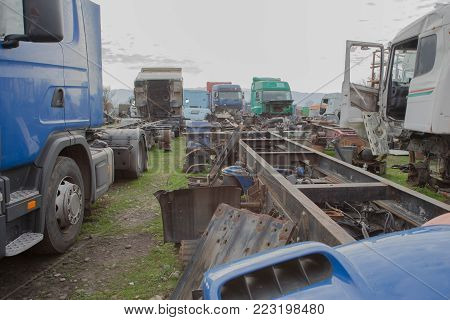 Abandon for years and old trucks rusts. Old and abandoned trucks